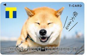 柴犬まるのTカード